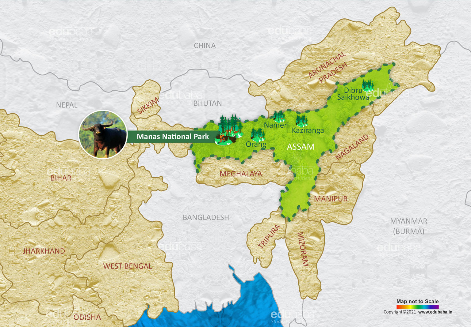Manas National Park | Definition, Map & Facts For Exam