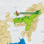 Dibru-Saikhowa National Park | Definition, Map & Facts For Exam